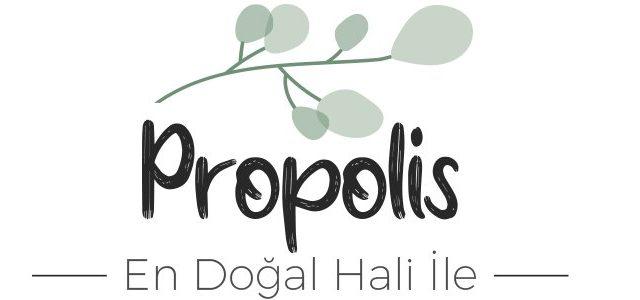 Propolis Yararları Nelerdir?